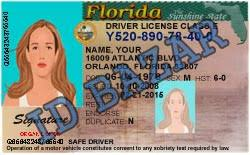 Bafaeeffceebc Yanabeealiraq Florida Template Beautiful - Drivers com License