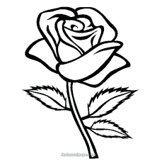 roses coloring pages decoration coloring pages roses printable pictures of with easy rose coloring pages rose roses