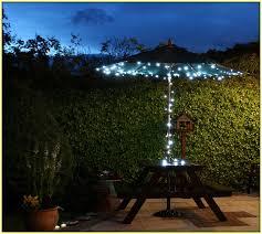 CURTAIN Fairy Lights  2m X 3m  Black Cable LEDSolar Fairy Lights Australia