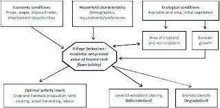 modelling of deforestation figure 2 a simplified outline of the model framework used by namaalwa et al 2007