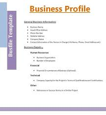 Business Owner Profile Template Business Owner Resume 425 294