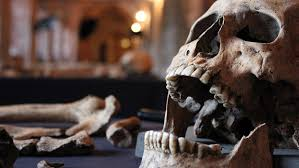monday reader return of the black death essay video  bubonic plague is still around today but kills in small numbers why did it kill so many in 1348 the discovery of 25 medieval skeletons in london provides