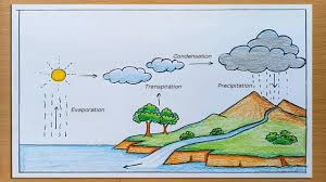 Science Project Chart Work How To Draw Water Cycle Of A School Project
