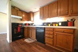Kitchen Cabinets Mobile Homes Colorviewfinder Co