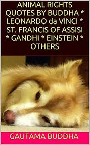 St Francis Quotes Classy MEMORABLE QUOTES About ANIMAL JUSTICE By BUDDHA LEONARDO Da VINCI