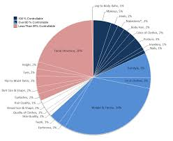 Healthy Eating Percentages Pie Chart Pie Chart Percentage Of U S Women Dress Size Google