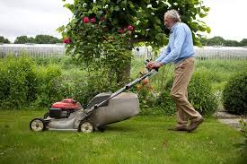 Understanding Basic Lawn Care Tools