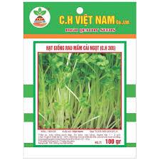Combo 2 Gói Hạt Giống Rau Mầm Cải Ngọt (100gr/gói)