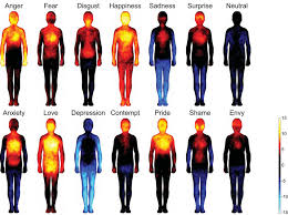 Kinesiology Emotion Chart Mapping Emotions On The Body Love Makes Us Warm All Over