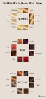 Color Chart For Hair Color How To Pick The Best Hair Colour From The Hair Colour Chart