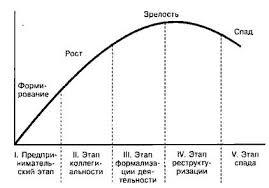 Реферат Жизненный цикл организации ru Реферат Жизненный цикл организации 3