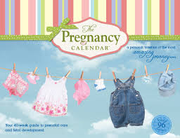 Calendars For Pregnancy The Pregnancy Calendar Your 40 Week Guide To Prenatal Care