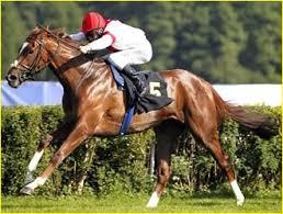 """Résultat de recherche d'images pour """"gifs de de astuce de course de chevaux"""""""