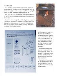 eastern screech owl nest box plans