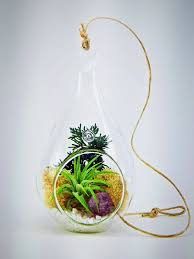 Air Plant Terrarium Genuine Purple Amethyst Crystal Quartz In Tear Drop Air Plant Terra