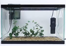 3 best small aquarium heaters for tiny