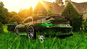 porsche 997 crystal nature car