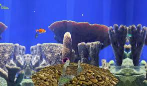Fish Tank 3d Live Wallpapers Shared By Warren Scalsys
