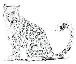 Coloring Snow Snow Leopard Coloring Pages Print Page Animals