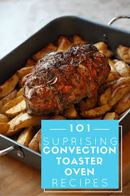 101 surprising convection toaster oven recipes