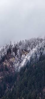 iPhone Winter Trees Wallpapers ...