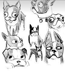 Chihuahua Terrier Chihuahua Wiring Diagram Database