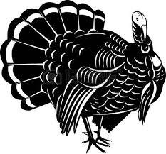 wild turkey clipart black and white. Beautiful Black Turkey Clip Art Wild 6660330 On Wild Turkey Clipart Black And White