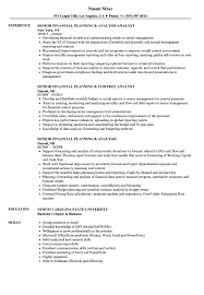 Download Senior Financial Planning Resume Sample as Image file