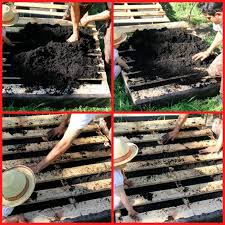 fill pallet with potting soil