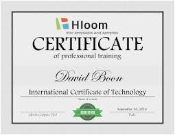 Award Certificate Template Free Professional Award Certificate Template Amazing 7 Training