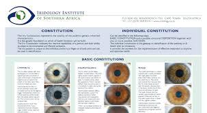 What Is Iridology Chart Veracious Iridology Iris Chart 2019
