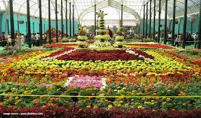 garden shows. Flower Shows In India Garden