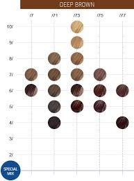 Koleston Color Chart Numbers Wella Colour Touch Chart Numbers Best Picture Of Chart