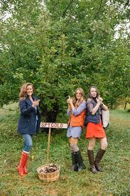 The Londoner Apple Picking New England