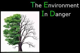 environmental problems and solutions essay environment is in danger environmental problems and solutions essay