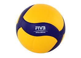 <b>Мяч волейбольный Mikasa</b> FIVB Exclusive V200W - Сеть ...