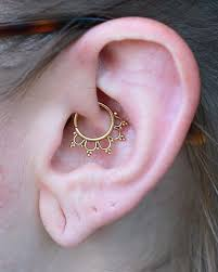 picture perfect yellow gold daith jewelry by buddha jewelry organics piercing gold fashion jewelry earring daith quality bodyjewelry