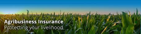 agribusiness farm insurance agribusiness insurance