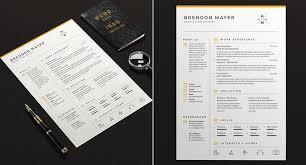 Buy Resume Templates Extraordinary 60 Professional MS Word Resume Templates With Simple Designs