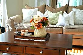 Decorative Trays For Living Room Decorative Trays For Coffee Tables Coffee Table Tray Gorgeous 17