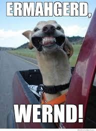 Ermahgerd Wernd! | WeKnowMemes via Relatably.com