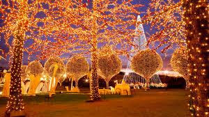 Yogi Bear Christmas Lights Where To See Christmas Lights In Nashville
