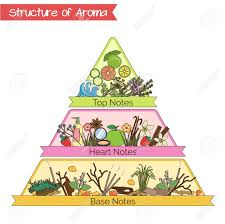 Aromatherapy Scent Chart Aromatic Structure Notes Guide For Perfume Scent And Aroma Info