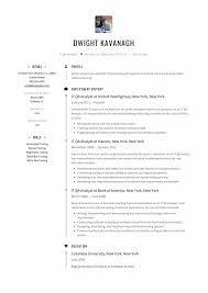 Resume Sample It IT QA Analyst Resume Sample Resumeviking 23
