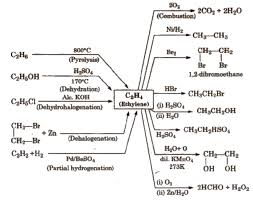 Alkene Addition Reactions Chart Cbse Class 11 Chemistry Notes Hydrocarbons Aglasem Schools