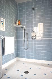 bathroom handicap accessible in michigan