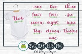Babys First Year Monthly Milestones Svg Png For Crafters