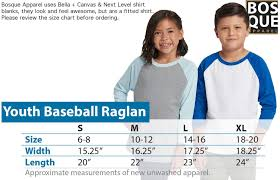 Next Level Youth Raglan Size Chart Amazon Com Have A Holly Dolly Christmas Country Music