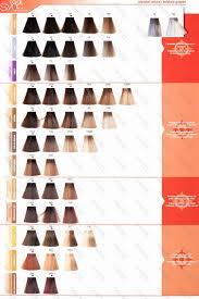 Exact Rusk Hair Color Swatch Rusk Deepshine Hair Color Chart