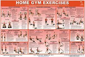 Multi Gym Wall Chart 32 Unfolded York 925 Multi Gym Exercise Chart